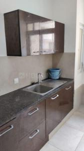 Gallery Cover Image of 600 Sq.ft 1 RK Apartment for rent in Prestige Bella Vista, Iyyappanthangal for 25000