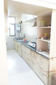 Kitchen Image of Shree Shyam PG in Green Field Colony
