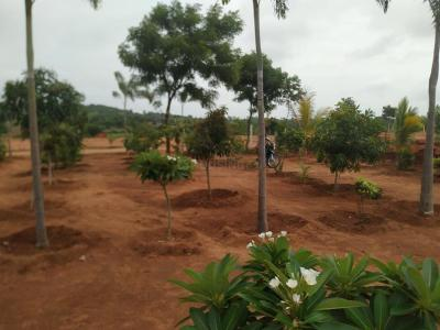 605 Sq.ft Residential Plot for Sale in Kadthal, Hyderabad