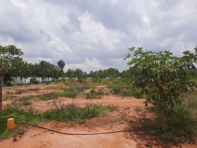 1115 Sq.ft Residential Plot for Sale in Bellahalli, Bangalore