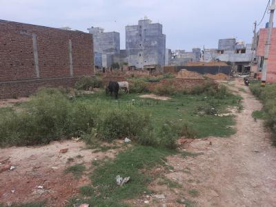 300 Sq.ft Residential Plot for Sale in Burari, New Delhi