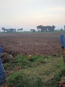 1080 Sq.ft Residential Plot for Sale in Police Colony, Nellore