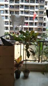 Balcony Image of PG 4194260 Nilje Gaon in Palava Phase 1 Nilje Gaon