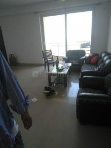 Gallery Cover Image of 1650 Sq.ft 3 BHK Apartment for rent in Sector 168 for 19000