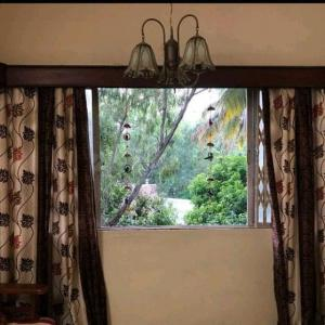 Gallery Cover Image of 1000 Sq.ft 2 BHK Apartment for rent in Rachana Aundh Lease, Aundh for 24000