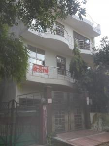 Building Image of PG 4035667 Alpha I in Alpha I Greater Noida