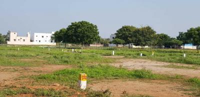 Gallery Cover Image of  Sq.ft Residential Plot for buy in Meenakshi Amman Nagar for 1893939