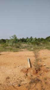 Gallery Cover Image of  Sq.ft Residential Plot for buy in Vairavapuram for 600000