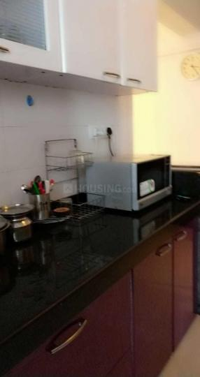 Kitchen Image of 600 Sq.ft 1 BHK Apartment for rent in Santacruz West for 45000