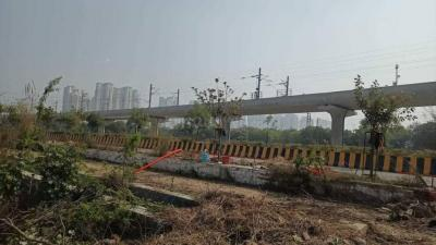915 Sq.ft Residential Plot for Sale in Sector 16A, Noida
