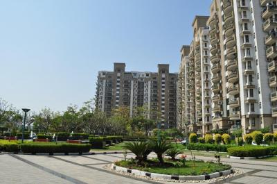 Gallery Cover Image of 1567 Sq.ft 3 BHK Apartment for rent in Sector 33 for 29000