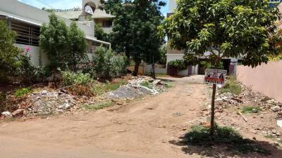 Gallery Cover Image of  Sq.ft Residential Plot for buy in Bharathi Nagar for 22000000