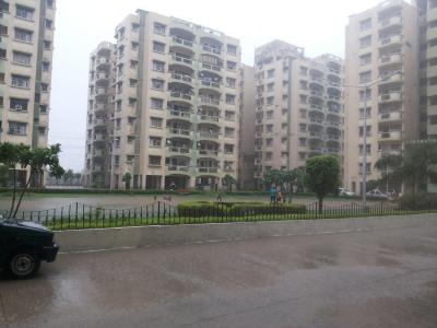Gallery Cover Image of 1500 Sq.ft 3 BHK Apartment for rent in Manesar for 17000