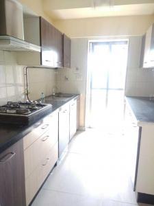 Kitchen Image of Anmol Property PG in Ghatkopar West