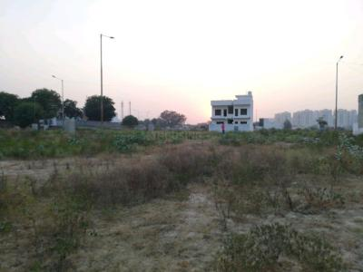 3150 Sq.ft Residential Plot for Sale in Sector 83, Faridabad