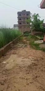 1340 Sq.ft Residential Plot for Sale in Phulwari Sharif, Patna