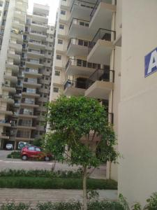 Gallery Cover Image of 473 Sq.ft 2 BHK Apartment for rent in Sector 82 for 6500