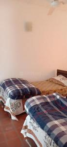 Gallery Cover Image of 550 Sq.ft 1 BHK Apartment for rent in Veera Geetanjali Enclave, Malviya Nagar for 30000