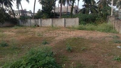 6560 Sq.ft Residential Plot for Sale in Kothapeta, Rajahmundry