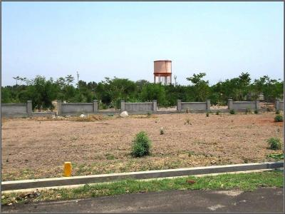 Gallery Cover Image of  Sq.ft Residential Plot for buy in Kovilpalayam for 1052000