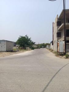 128 Sq.ft Residential Plot for Sale in Sector 133, Noida