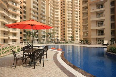 Gallery Cover Image of 980 Sq.ft 2 BHK Apartment for rent in Noida Extension for 8500