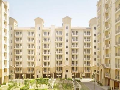 Gallery Cover Image of 1450 Sq.ft 3 BHK Apartment for rent in Emaar Palm Hills, Sector 77 for 15000