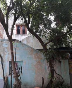 Gallery Cover Image of 1200 Sq.ft 3 BHK Independent House for buy in Velachery for 6800000