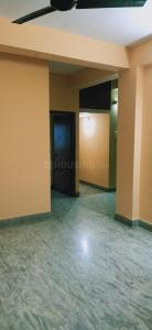 Gallery Cover Image of 1200 Sq.ft 3 BHK Apartment for rent in Hussainpur for 17000