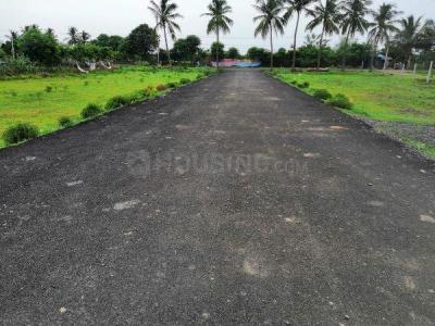 800 Sq.ft Residential Plot for Sale in Mambakkam, Chennai