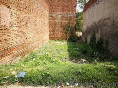 1788 Sq.ft Residential Plot for Sale in Rishi Vihar, Amritsar