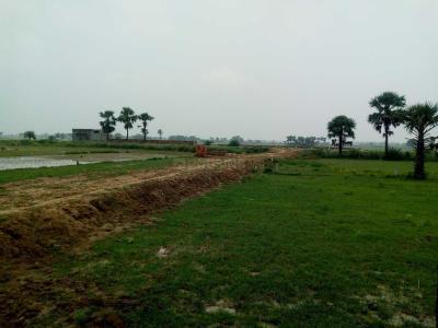 1361 Sq.ft Residential Plot for Sale in Paijawa, Patna