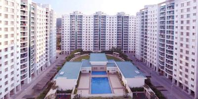 Gallery Cover Image of 989 Sq.ft 2 BHK Apartment for rent in Hinjewadi for 23000