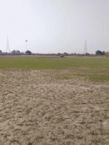 900 Sq.ft Residential Plot for Sale in Saboli, New Delhi
