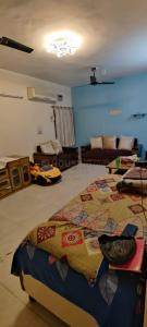 Gallery Cover Image of 1450 Sq.ft 3 BHK Independent Floor for rent in Ac Block, Shalimar Bagh for 30000
