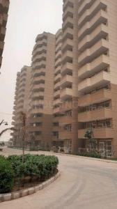 Gallery Cover Image of 451 Sq.ft 1 BHK Apartment for rent in Pyramid Urban Homes 2, Sector 86 for 8500