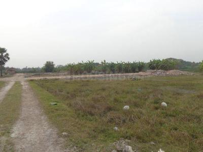 Gallery Cover Image of  Sq.ft Residential Plot for buy in Baruipur for 295000