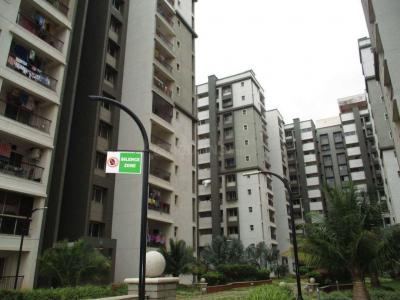 Gallery Cover Image of 1825 Sq.ft 3 BHK Apartment for buy in Sobha Daffodil , HSR Layout for 15000000