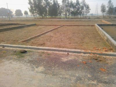 1100 Sq.ft Residential Plot for Sale in Nirala Nagar, Lucknow