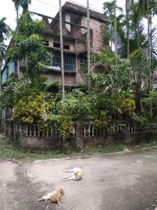 Gallery Cover Image of 1800 Sq.ft 2 BHK Independent House for buy in Mohispota for 3000000