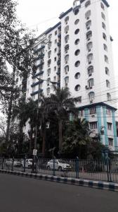 Gallery Cover Image of 1900 Sq.ft 3 BHK Apartment for rent in Tollygunge for 50000