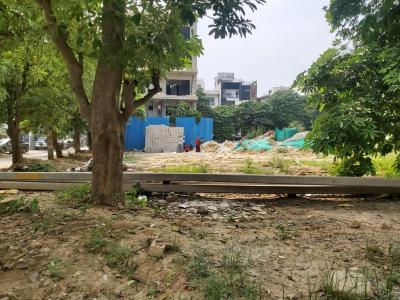 826 Sq.ft Residential Plot for Sale in Sushant Lok I, Gurgaon