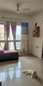 Gallery Cover Image of 899 Sq.ft 2 BHK Apartment for rent in Lodha Casa Bella Gold, Palava Phase 1 Nilje Gaon for 12000