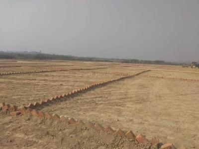 Gallery Cover Image of  Sq.ft Residential Plot for buy in Sipri Bazar for 300000