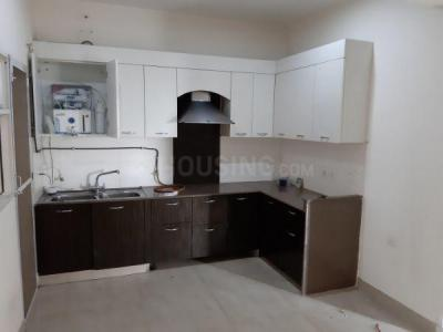 Gallery Cover Image of 1560 Sq.ft 3 BHK Apartment for rent in Sector 137 for 14000