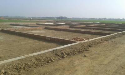 1200 Sq.ft Residential Plot for Sale in Chhittupur, Varanasi
