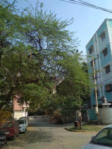 Gallery Cover Image of 3600 Sq.ft 4 BHK Independent House for buy in Murad Nagar for 45000000