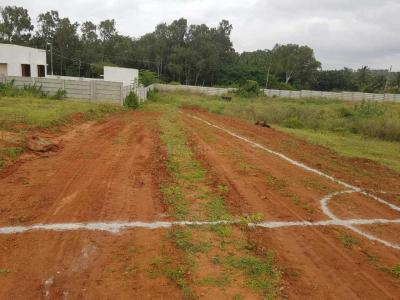 Gallery Cover Image of  Sq.ft Residential Plot for buy in Hebbal 1st Stage for 1500000