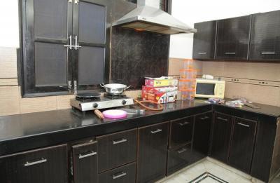 Kitchen Image of PG 4642954 Sushant Lok I in Sushant Lok I