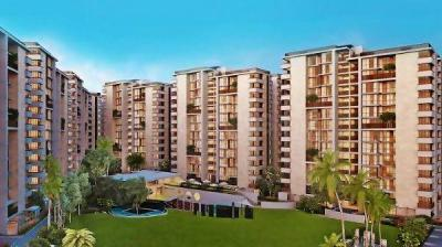 Gallery Cover Image of 3618 Sq.ft 4 BHK Apartment for buy in Maple Tree Garden Homes, Memnagar for 28000000